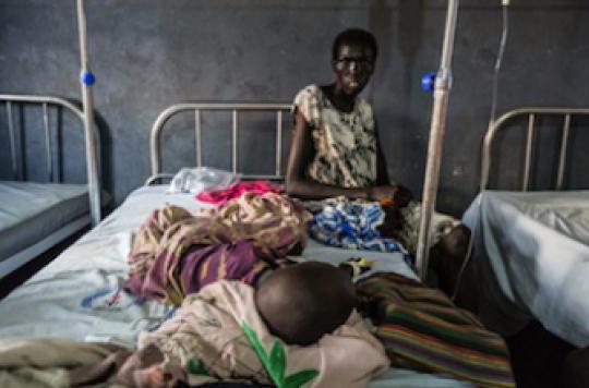 Paludisme : l'OMS  dévoile un plan de 100 milliards pour l'éradiquer