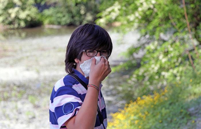 Allergie : la France envahie par les pollens de graminées