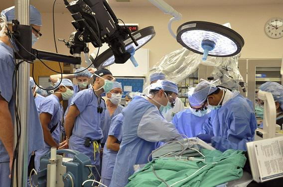 Greffes d'organes : en augmentation, mais la liste d'attente s'allonge