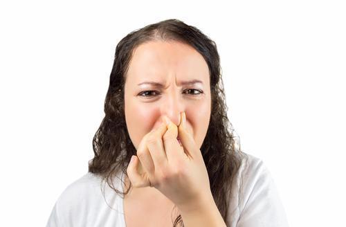 Se laver les dents est important mais le brossage de la langue ne sert à rien contre la mauvaise haleine