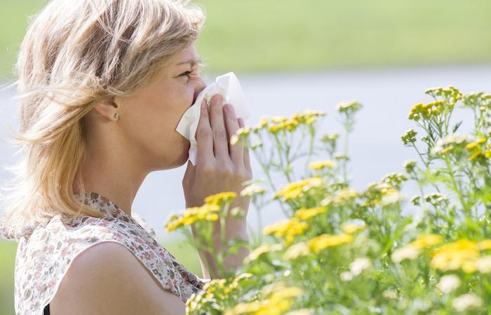 Allergies : 28 départements placés en alerte rouge
