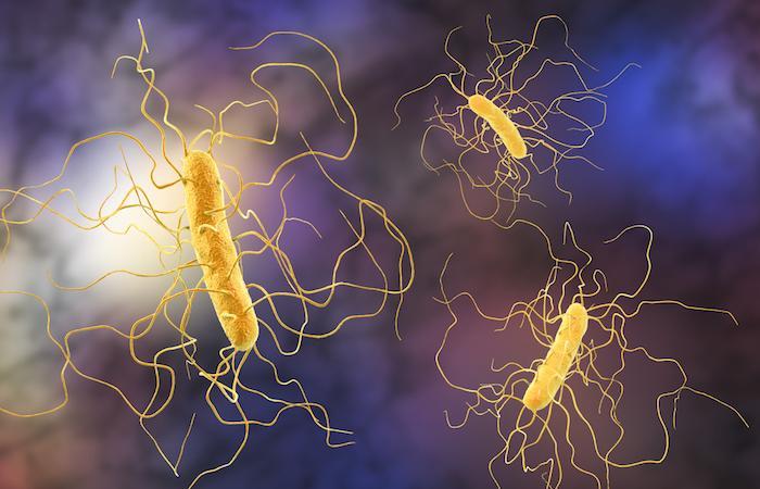 Antibiotiques: une ancienne molécule rendue 1 000 fois plus efficace