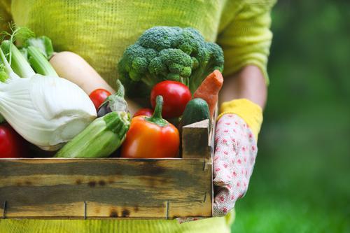 Une bonne alimentation limite l'ostéoporose à la ménopause