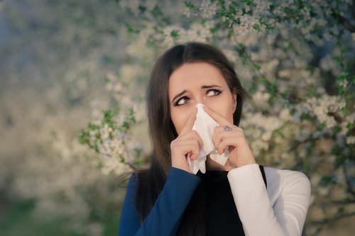 Allergies au bouleau : risque très élevé à Lyon et Paris