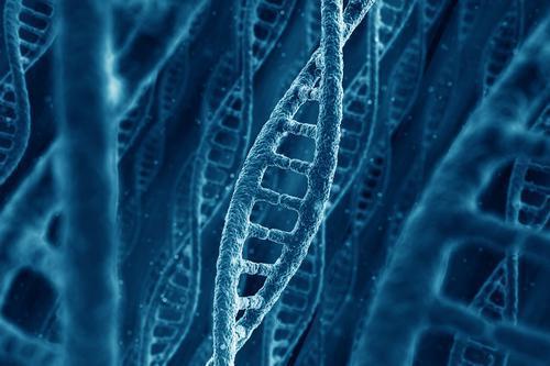 CRISPR : les Etats-Unis l'autorisent pour un essai sur l'homme