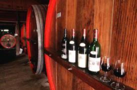 Les Français boivent en quantité, mais de qualité