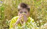 Allergies : vigilance rouge maintenue dans la plupart des régions