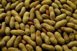 Allergies : donner des cacahuètes aux bébés pour les éviter
