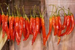 Le piment rouge allonge l'espérance de vie