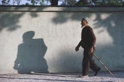 Arthrose : l'Europe demande la suspension de la diacéréine