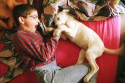 Asthme allergique : la fourrure animale protège les tout-petits