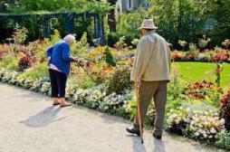 Pourquoi bien vieillir est un défi mondial pour la santé publique