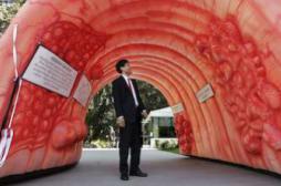 Cancer colorectal : la maladie...