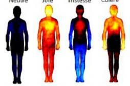 Chaque émotion est liée à une partie du corps humain