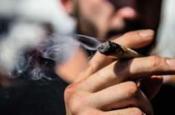 Cannabis : commencer tôt augmente le...