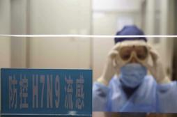 H7N9 : 4 nouveaux décès en Chine
