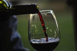 Des chercheurs découvrent enfin pourquoi le vin est bon pour la santé