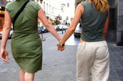 PMA pour les homosexuelles: François Hollande saisit le comité d'éthique