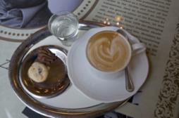 Alzheimer : la caféine préserve la...