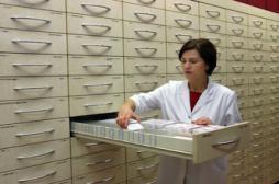 Pharmaciens : portrait d'une jeune génération motivée