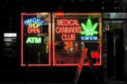 Cannabis : la consommation des jeunes Américains a nettement baissé