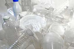 Asthme : l'exposition prénatale aux phtalates augmente le risque
