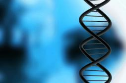 Un test ADN pour détecter 254 maladies commercialisé au Royaume-Uni