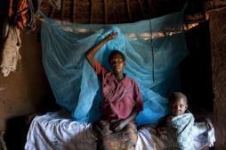 Paludisme : la mortalité des enfants divisée par 2 depuis 2000