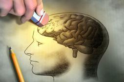 Alzheimer : une molécule bloque l'accumulation d'une protéine toxique