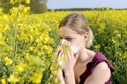 Covid-19 et pollens : des précautions à prendre ... mais éviter la psychose !