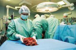 Greffe : une technique prolonge la vie des organes à transplanter