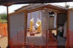 Ebola : un médecin humanitaire américain touché par le virus