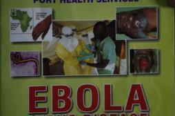 Ebola : comment la France se prépare en 4 points
