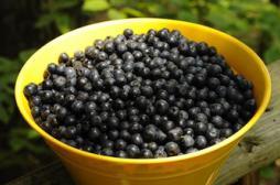 Manger des fruits entiers réduirait le...