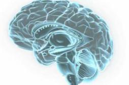 Alzheimer : une piste pour réparer les pertes de mémoire