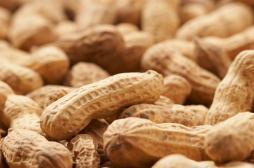 Allergie aux cacahuètes : le baiser qui tue