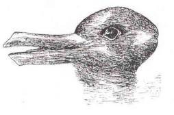 Lapin ou canard ? Cette illusion d'optique en dirait long sur votre personnalité