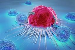 Un nouveau système d'identification des cellules cancéreuses cachées