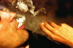 Plan addictions : le cannabis sous...