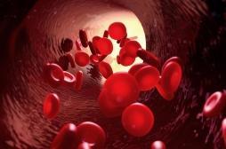 La myélofibrose, une maladie rare et incurable de la moelle osseuse, augmente le risque face à la Covid-19
