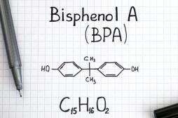 L'exposition au bisphénol A a des conséquences sur plusieurs générations