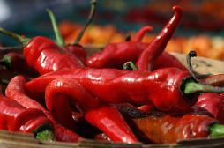 Piment rouge : l'effet bénéfique sur l'espérance de vie