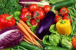 Alimentation : notre cerveau nous fait éviter les légumes verts