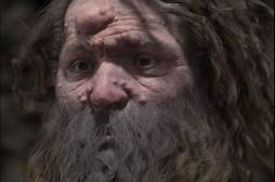 Non! Tous les hommes de Cro-Magnon n'avaient pas le visage couvert de nodules…