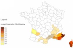 Dengue, chikungunya : la carte de France des départements les plus touchés