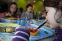 Alimentation : les cantines scolaires au tableau d'honneur
