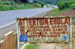 Un antiviral à haute dose efficace contre le virus Ebola