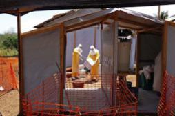 Ebola : « Le risque que le virus...