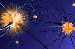 Une explication à la mort subite dans l'épilepsie