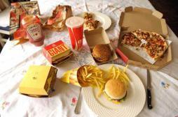 Obésité : le cercle vicieux des aliments gras enfin expliqué